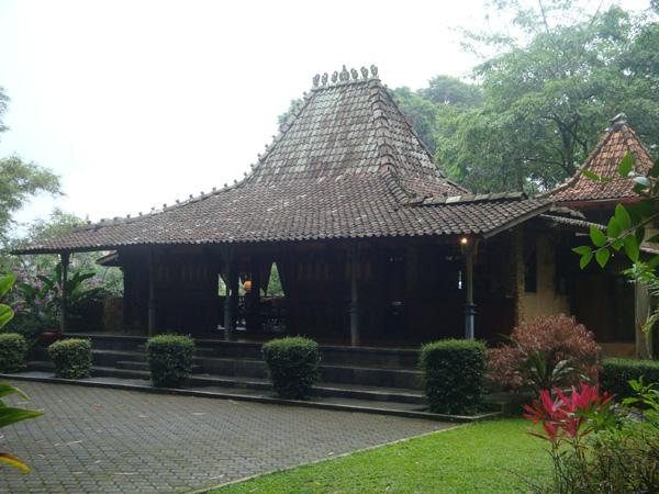 Rumah Joglo (Javanese Traditional House)
