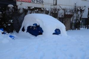 Dan ditutup dengan mobil tenggelem salju hahaha