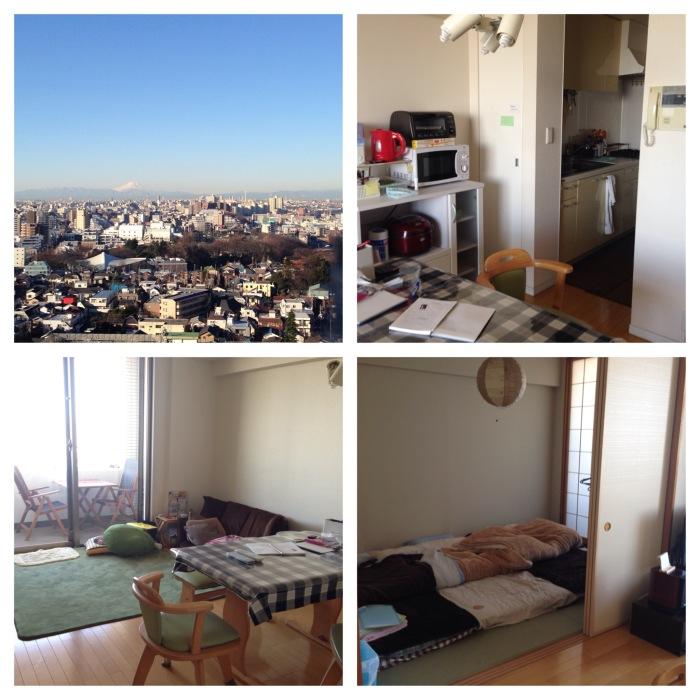 The Tokyo Mega City, The Apartment